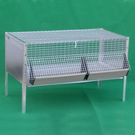 Cage pour Poussins
